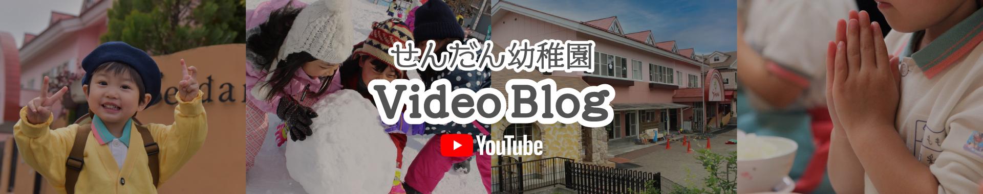 せんだん幼稚園 Vlog